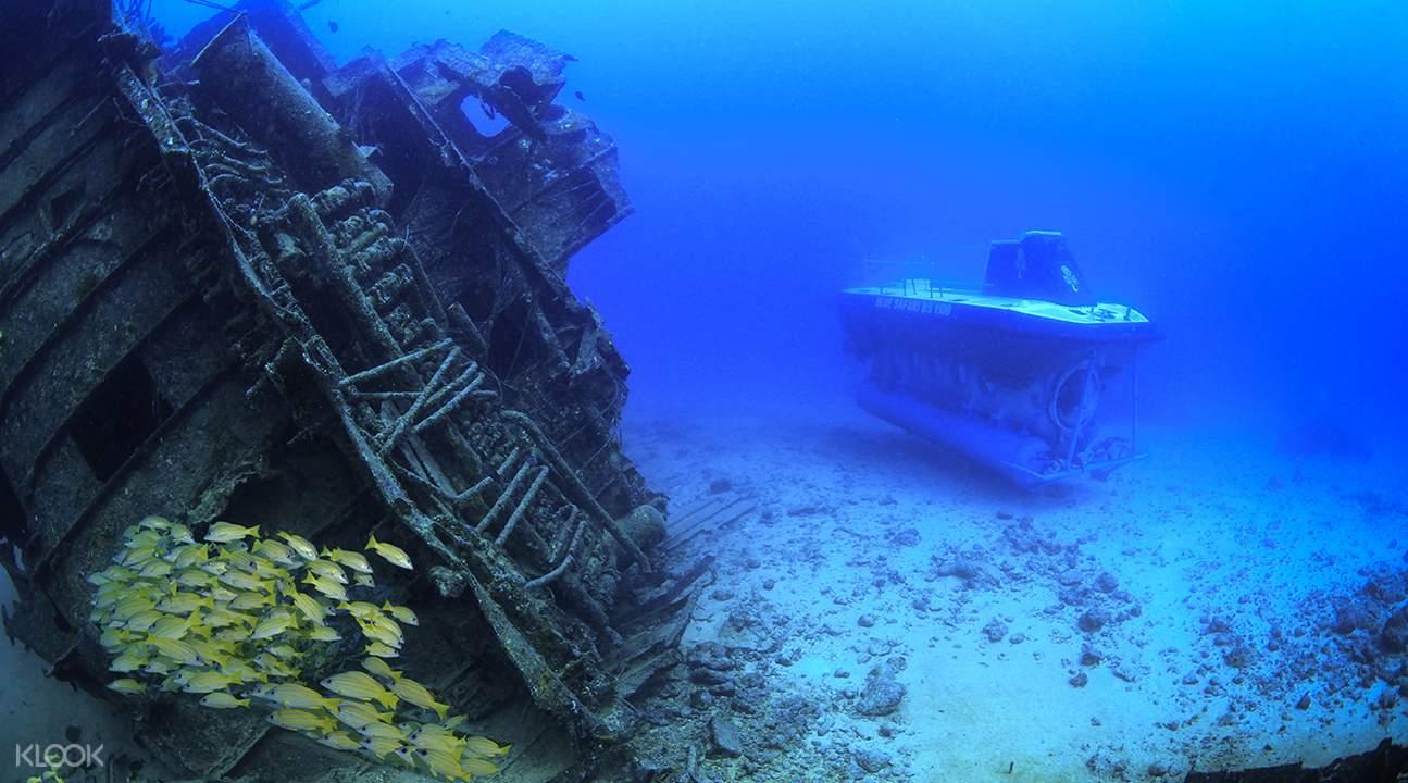 不仅可以与深海动物近距离接触,还可看到17世纪便沉在海底的「希望
